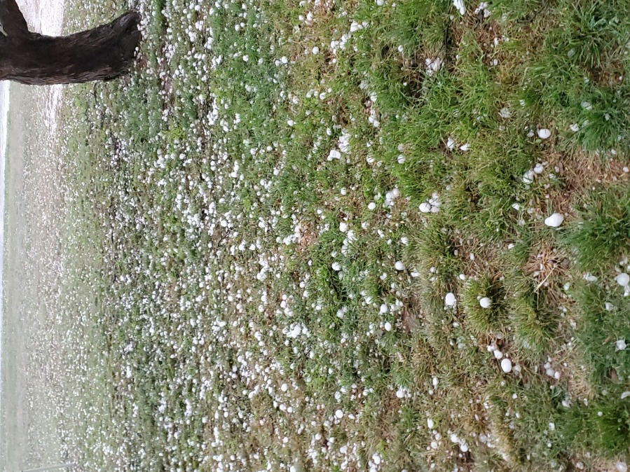 Hail in Llano County, west of the city on April 12, 2021 - from Matt Baker