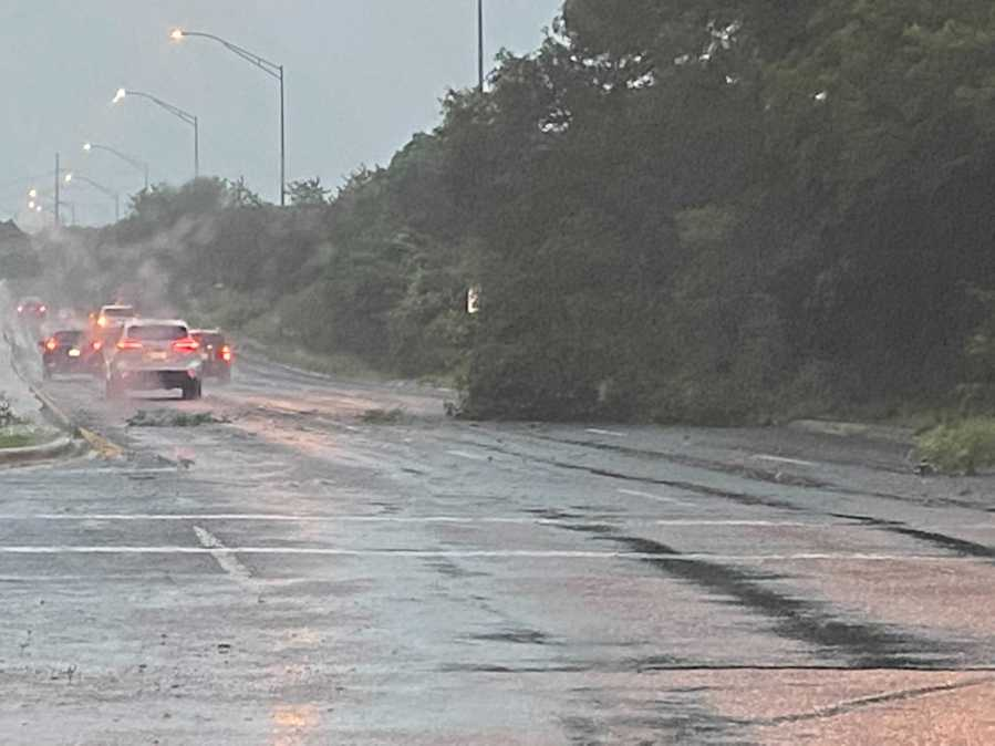 Tree down at William Cannon Drive and Beckett Road (KXAN/Billy Gates)