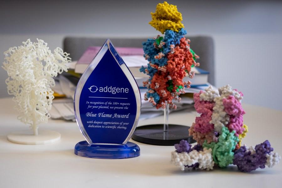 Blue flame award with 3D models (KXAN Photo/Ashley Miznazi)