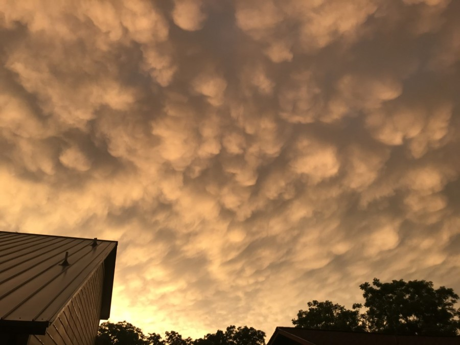 Mammatus clouds in Austin (Courtesy of Janet Butler)
