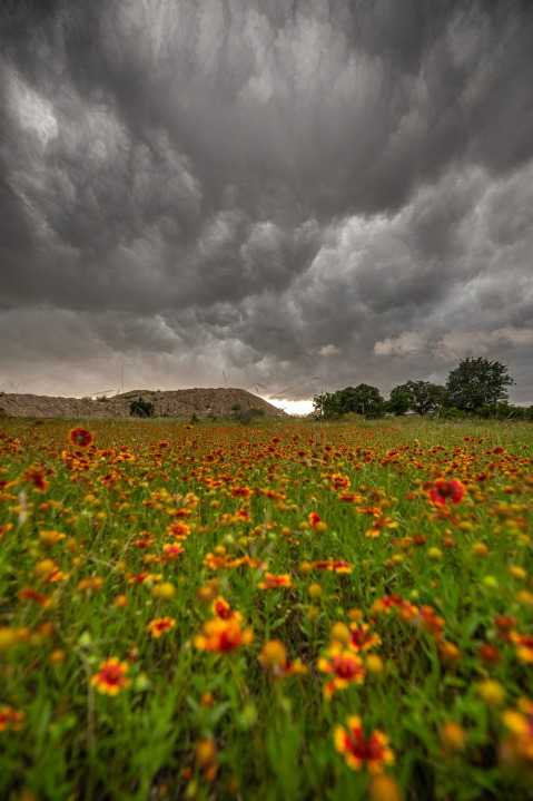 North of Dripping Springs (Courtesy Jerry Moreno)