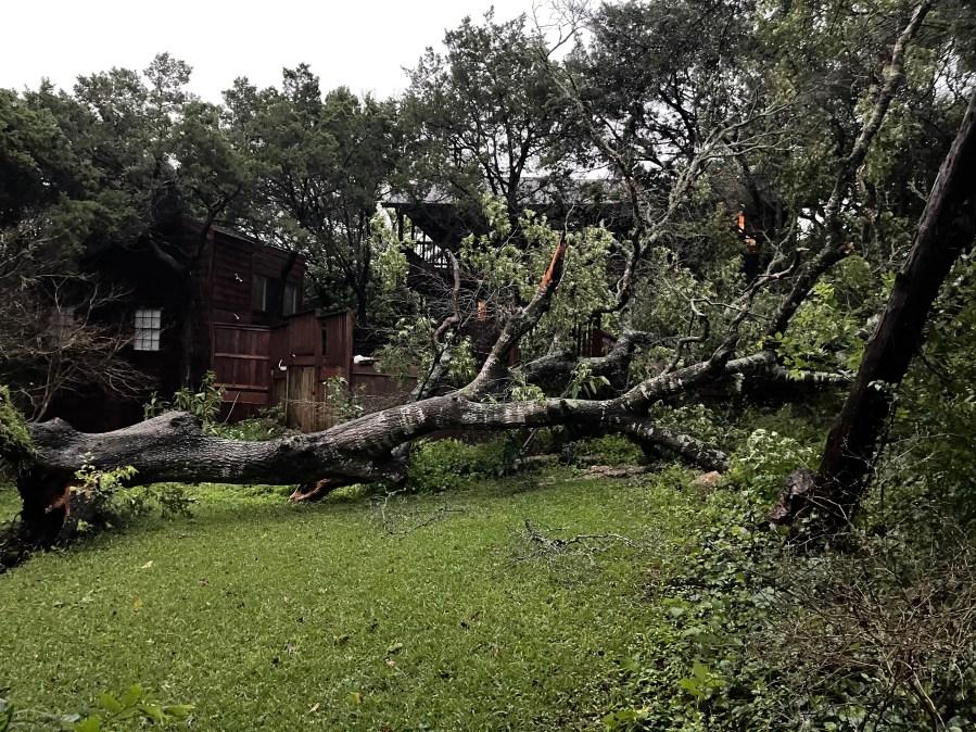 Tree down at Surrey Hill Drive in Austin (Courtesy Debbie Martin)