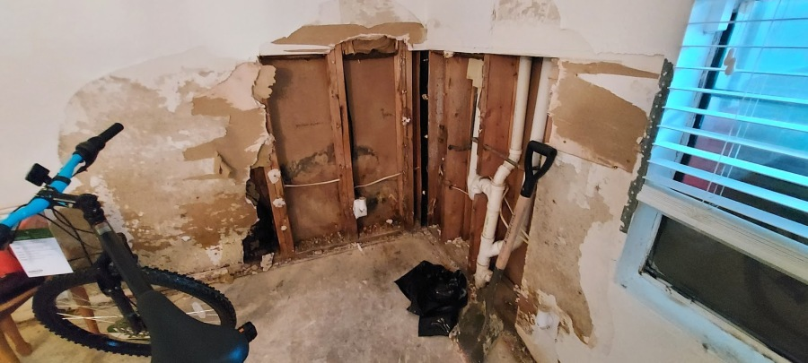 Mold in rental properties after February's winter storms (City of Austin photo)