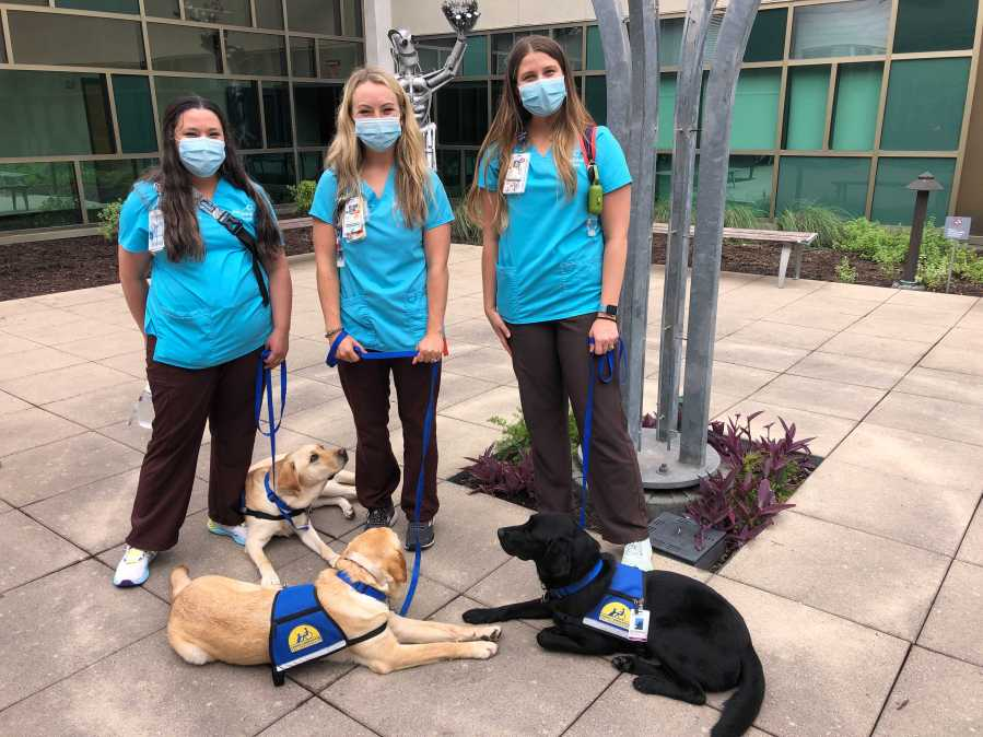 Three full-time medical dogs joined the Dell Children's team (KXAN Photo/Frank Martinez)