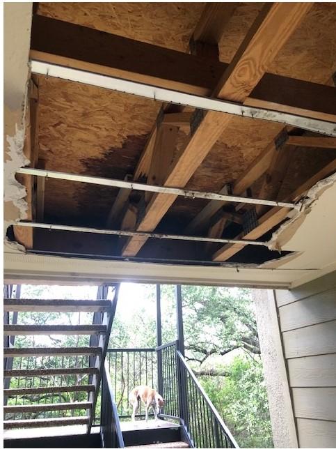 Photo of ceiling damage at Denise Mahoney's Austin apartment complex. (Courtesy Denise Mahoney)