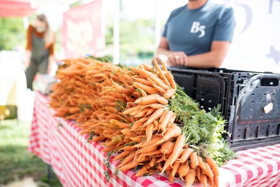 B5 Farm Carrots