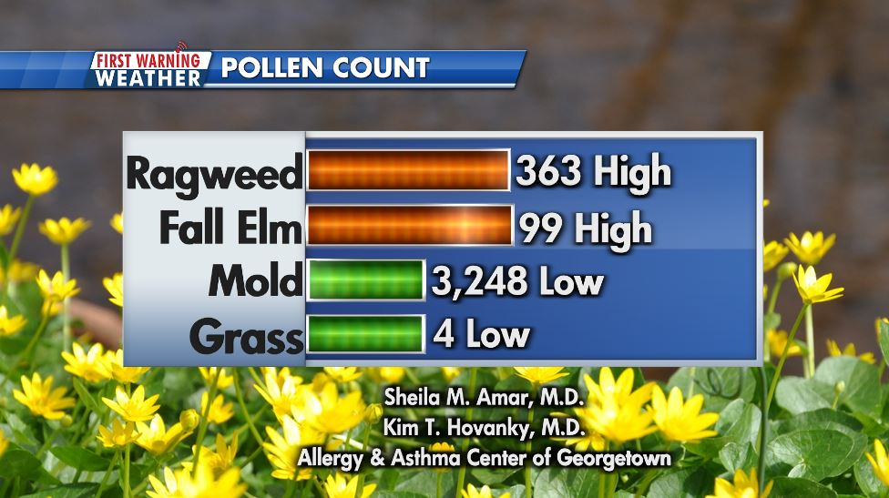 Thursday's pollen count showing high ragweed and fall elm