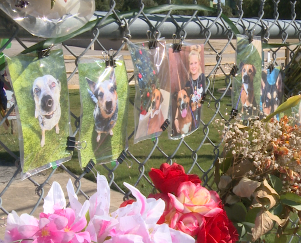 A memorial forms outside Ponderosa Pet Resort in Georgetown, where a fire killed 75 dogs. (KXAN Photo/Tahera Rahman)