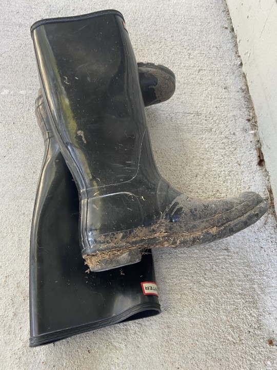 Digital reporter Grace Reader's boots after day one of ACL